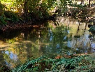 guardo rios